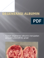 R1-PA (Degenerasi Albumin)