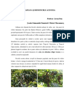 cafeaua_si_beneficiile_acesteia_02.doc