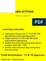 unit 6 - lesson 9 - goals of the firm