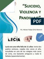 Suicidio, Violencia y Pandillaje