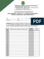 Folha de Registro Aec Prac2a6c3bctica 5 6 7 e 8