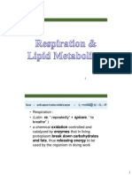 Lect7 Respiration
