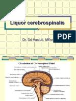 Cerebrospinal