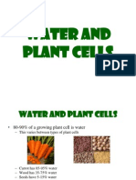 Lec 2- Water and Plant Cells