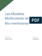 Les Modèles Moléculaires Du Membrane