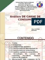 Analisis de Carne de Consumo