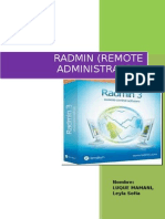 manual_radmin.docx