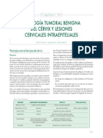 30-Patologia Tumoral Benigna Del Cervix y Lexiones Cervicale Intraepiteriales