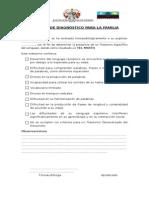 Informe de Diagnóstico Para La Familia Mixto