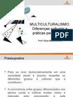 Slides Multiculturalismo-16!03!2015 Ppt