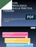 Evaluacion Neuropsicologica en La Practica Forense