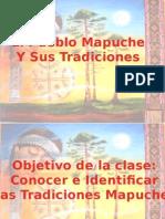 MApuches.pptx