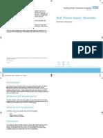 STIShoulder[1].pdf