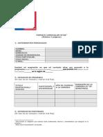 Formato Curriculum Vitae FOSIS