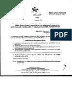 C.I.%28IMG%29-3-2015-000049-%281%29-7770001- GRUPO- - DIRECTRICES  DEL PROGRAMA DE BIL
