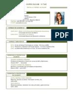 Curriculum Profesor 09