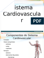 P0001 File Sistema Cardiovascular