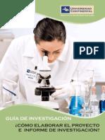 Guia Investigacion Instituto Investigacion