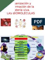 biomoléculas 2015