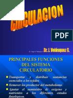 1er Clase Circulación