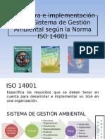 Estructura Gestion Ambiental
