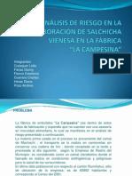 proyecto salchicha1