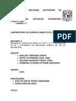 Reporte Pruebas de Identificacion de Fe, Ni,Cr