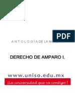 DERECHO+DE+AMPARO+I
