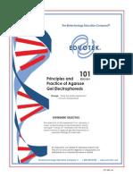 Gel Electrophoresis.pdf