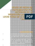 ANÁLISIS DE RIESGO DE CONTAMINACIÓN POR PATÓGENOS EN EL PROCESO PRIMARIO DE LECHE CRUDA