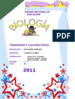 Practica Nº 6-Célula Procarionte,Bacterias