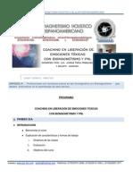 Coaching en Liberación de Emiociones Toxicas Con Biomagnetismo y Pnl