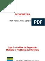 Econometria_Capitulos 8