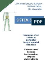 sistem-saraf3-2003_5.ppt