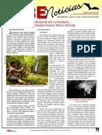 Sociedade Brasileira de Espeleologia - Noticias 312
