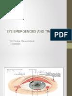 Eye Emergencies and Trauma