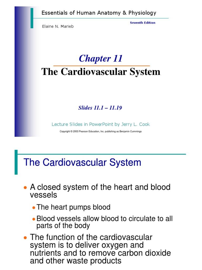 Chapter 11 jk.pdf | Heart Valve | Atrium (Heart)