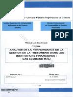 Analyse de La Performance de La Gestion de La Trésorerie Dans Les Institutions Financieres