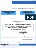 Analyse de La Performance de La Gestion de La Trésorerie Dans Les Institutions Financieres