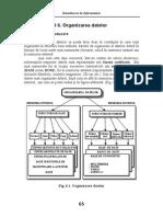 6_Organizarea_datelor