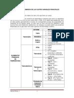 Elementos Primarios de Las Cuatro Variables Principales