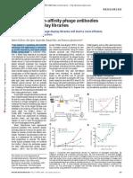 M13 Selection High Affinity Phage Antibodies Bruin