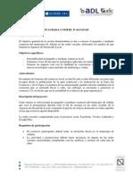 Ficha Proyecto Comercios 2.0