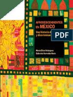 VELAZQUEZ E NIETO; Afrodescendientes en México