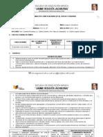 programacioncurricularanual-130511092755-phpapp01.pdf