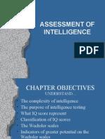 Assessment of Intelligence