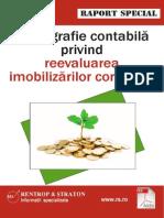 Raport-special-PortaMonografiiContabile.pdf