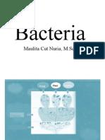 Bacteria(1) Fix
