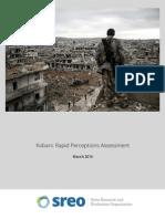 Kobani - Rapid Perceptions Assessment