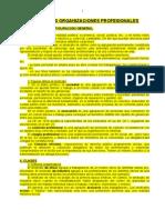 08. Las Organizaciones Profesionales
